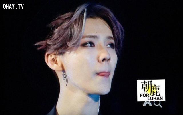 Lộc Hàm xúc động khi thể hiện bài hát cuối cùng,Luhan,Cpop,Reloaded concert