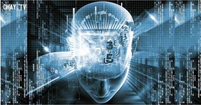 ,sự thật não người,khám phá,những điều thú vị trong cuộc sống,não người