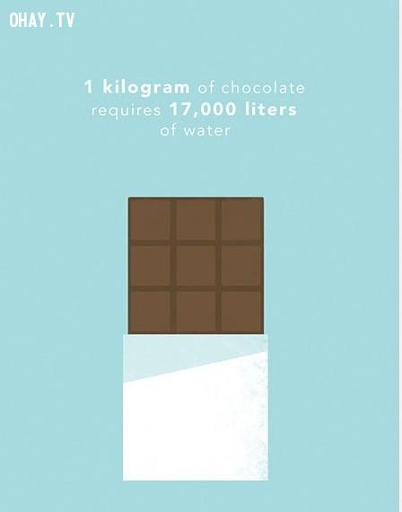 1. Để sản xuất ra 1 kg sô cô la cần tới 17 000 lít nước. Lượng nước này đủ để lấp đầy một bể bơi gia đình.,thực phẩm,tiết kiệm nước,sự thật thú vị,những điều thú vị trong cuộc sống