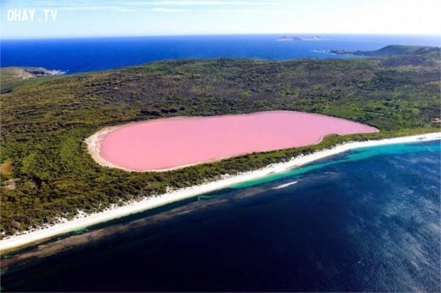 Hồ nước hồng Retba, Senegal,ảnh thiên nhiên đẹp,ảnh thiên nhiên rực rỡ sắc màu,ảnh đẹp