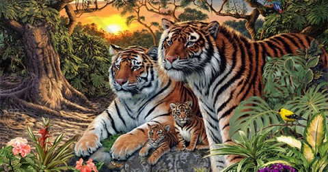Bức tranh gây tranh cãi: Có bao nhiêu con hổ?