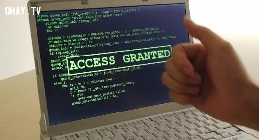 Downvn.net - Download phần mềm miễn phí