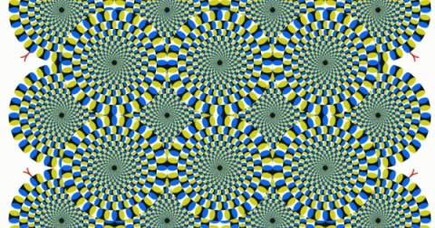 Bức ảnh này có thể tiết lộ mức độ Stress của bạn