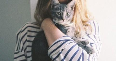 Mỗi cô gái nên có một chú mèo