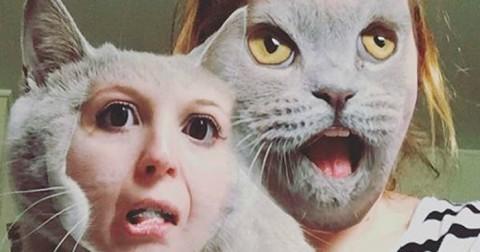 Chùm ảnh hài công nghệ đã thay đổi cuộc sống của em Mèo như thế nào