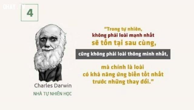 """""""Trong tự nhiên, không phải loài nào mạnh nhất sẽ tồn tại sau cùng, cũng không phải loài thông minh nhất, mà chính là loài có khả năng ứng biến tốt nhất trước những thay đổi"""".,câu nói truyền cảm hứng,phong cách sống,câu nói của người thành công"""