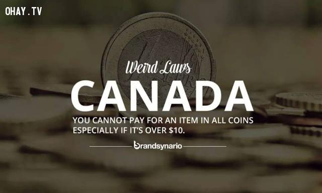 5. Canada: Bạn không thể trả tiền cho một món đồ chỉ bằng tiền xu, đặc biệt nếu như nó có giá trên 10 USD.,những điều thú vị trong cuộc sống,sự thật thú vị,luật lệ kỳ lạ,sự thật kỳ lạ,phạm pháp,vi phạm pháp luật