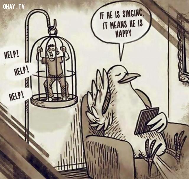 Hãy thả tự do cho những loài chim đang bị giam cầm kia.,săn bắt trái thú rừng trái pháp luật,con người hoán đổi vị trí con động vật