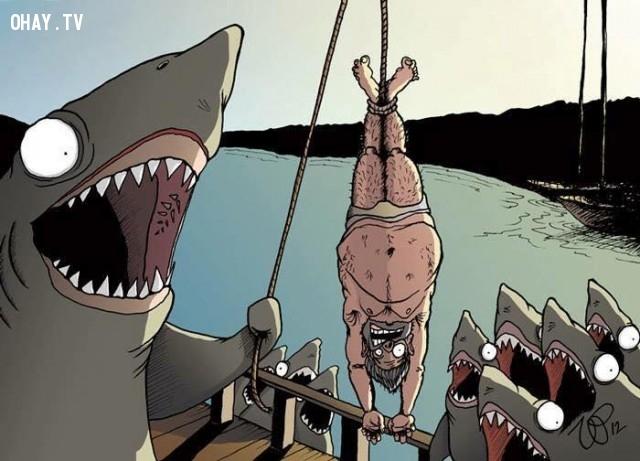 Nạn săn bắt cá mập bừa bãi sẽ trở thành như thế nào?,săn bắt trái thú rừng trái pháp luật,con người hoán đổi vị trí con động vật