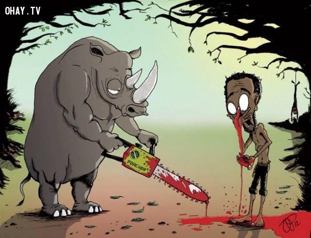 Bạn có hiểu được nỗi đau của những con tê giác này không?,săn bắt trái thú rừng trái pháp luật,con người hoán đổi vị trí con động vật