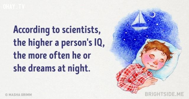 6. Theo các nhà khoa học, người có chỉ số IQ càng cao, thì thường mơ nhiều hơn vào ban đêm.,những điều thú vị trong cuộc sống,sự thật thú vị,sự thật đáng kinh ngạc