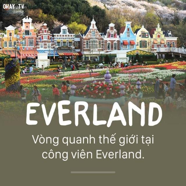 Everland,Hàn Quốc,địa danh nổi tiếng,cảnh đẹp ở hàn quốc