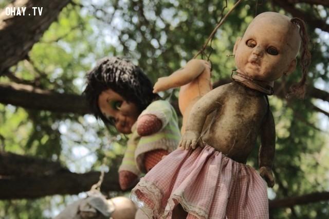 6. Hòn đảo Búp bê ma quái (Isla de las Munecas) ở Mexico,chuyện ma ám,câu chuyện ma ám khủng khiếp,ảnh ma ám,rùng rợn,ma quái,nguyền rủa
