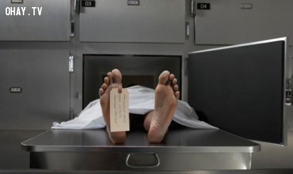 Người đàn ông đến từ Johannesburg,người chết sống lại