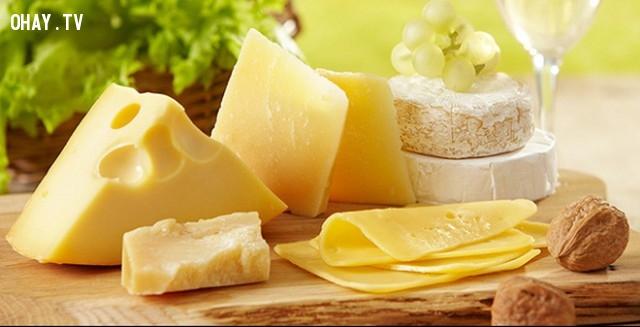 Pháp sử dụng chất thải của Phomat làm điện năng ,ẩm thực,những điều thú vị trong cuộc sống