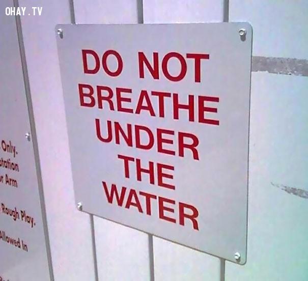 6. 'Không được hít thở dưới nước'. Lời cảnh báo rất chân thật.,biển báo,ảnh hài,chuyện lạ