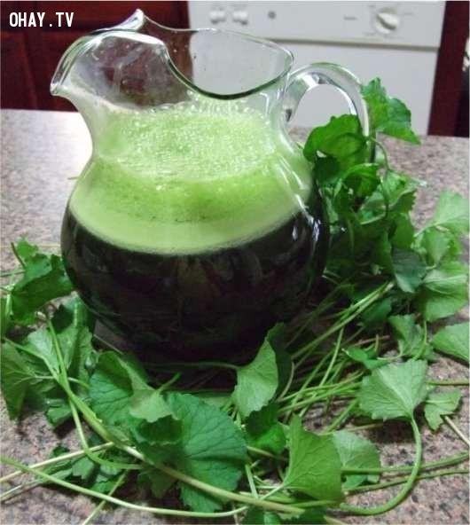 2.Nước rau má,thức uống mùa hè,thức uống thanh nhiệt,thức uống đẹp da,pha chế thức uống đơn giản