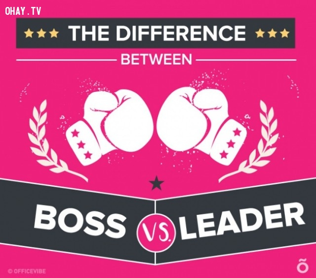 ,boss,leader,differences