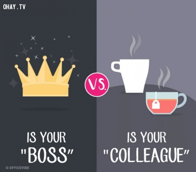 9.,boss,leader,differences