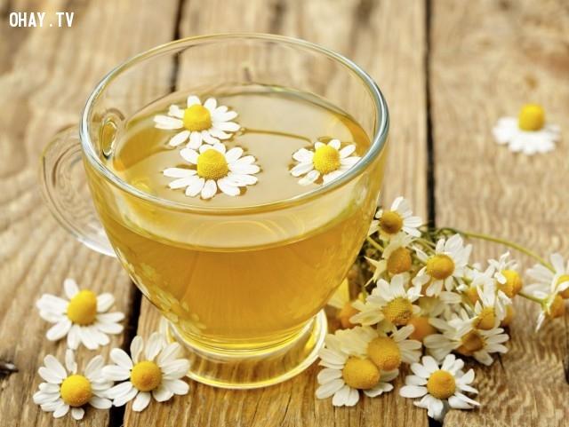 9.Trà hoa cúc,thức uống mùa hè,thức uống thanh nhiệt,thức uống đẹp da,pha chế thức uống đơn giản
