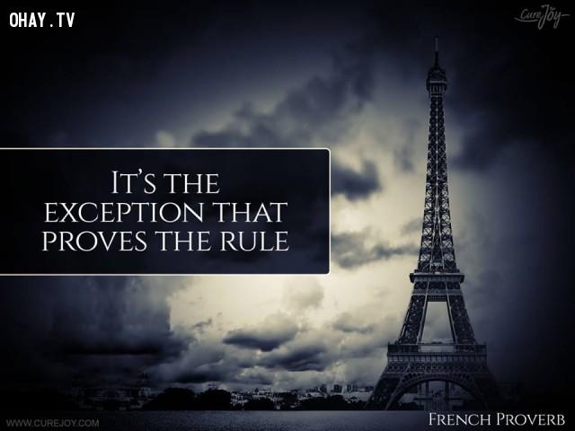 2. Ngoại lệ chứng minh sự tồn tại của quy tắc.,ngạn ngữ Pháp,ngạn ngữ hay,trích dẫn hay,Pháp,suy ngẫm,bài học cuộc sống
