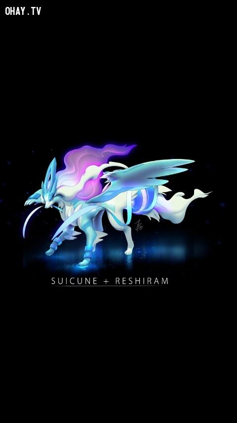 Suicune + Reshiram,pokemon