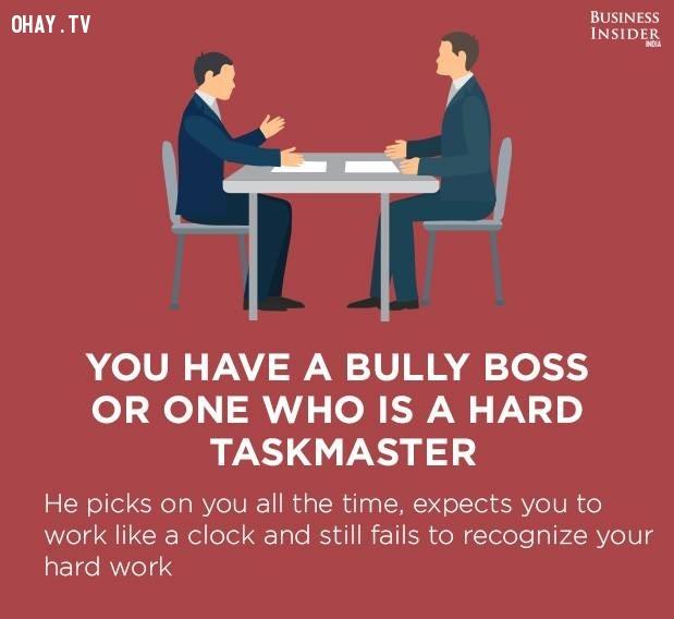 5. Bạn có một ông chủ hay bắt nạt hoặc một người giao việc khó khăn,công việc nhàm chán,sự hài lòng với công việc,mức độ hài lòng với công việc,công việc không phù hợp