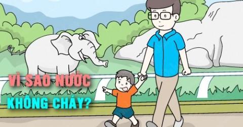 10 câu hỏi vì sao của trẻ em hiếm người trả lời được