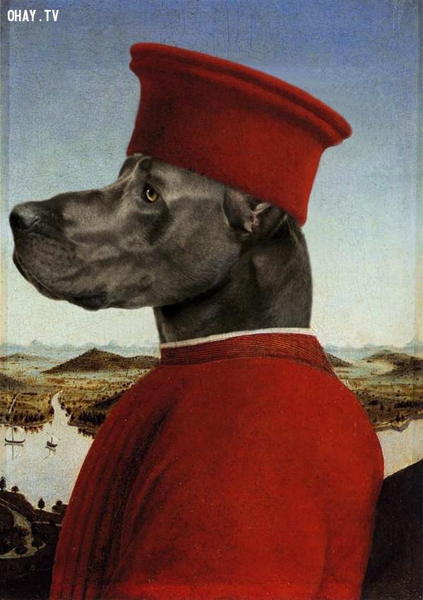 """10. """"Chân dung của Công tước Urbino"""" (bản gốc của Piero della Francesca),động vật,tranh thời phục hưng,bức họa nổi tiếng"""