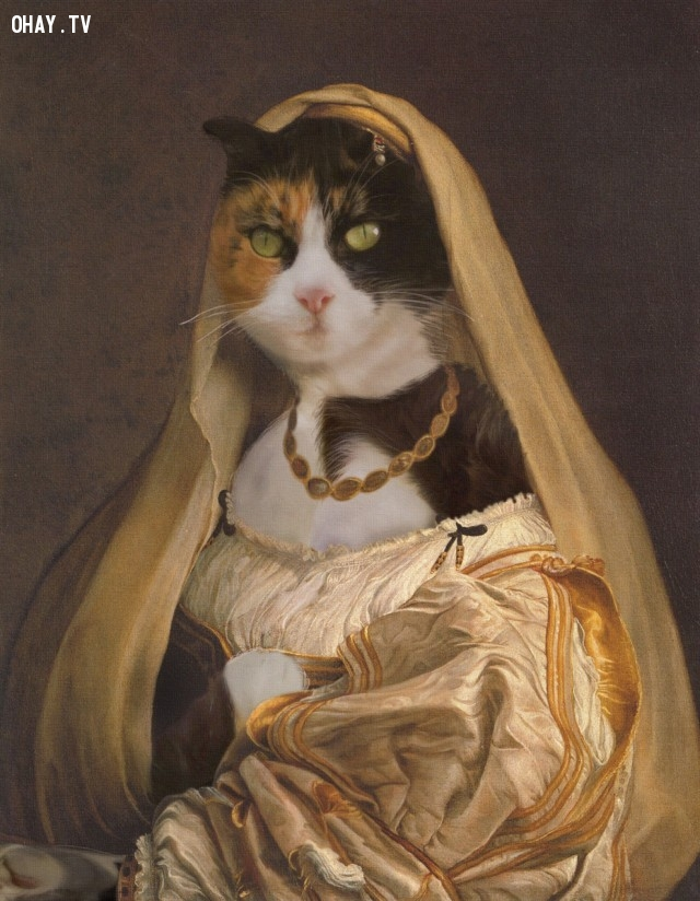 """4. """"Người đàn bà choàng mạng """" (bản gốc của Raphael),động vật,tranh thời phục hưng,bức họa nổi tiếng"""