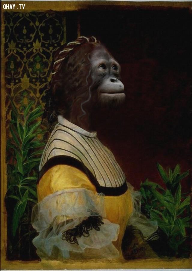 """3. """"Chân dung của một người phụ nữ"""" (bản gốc của Frederick Sandys),động vật,tranh thời phục hưng,bức họa nổi tiếng"""