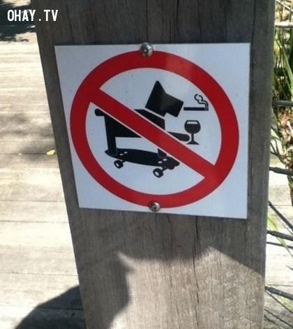 4. Cấm chó trượt patin, hút thuốc, uống rượu,ảnh hài hước,biển cấm