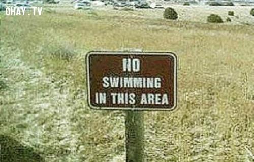 9. Có lẽ vùng đất khô cằn này trước đây là một hồ nước,ảnh hài hước,biển cấm