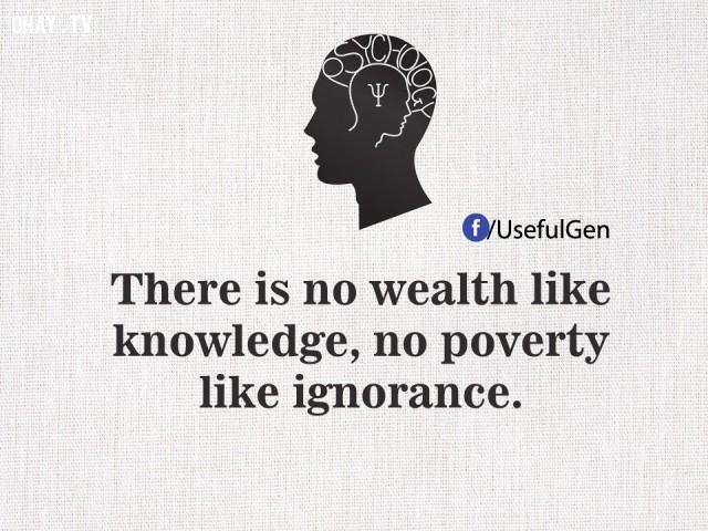 5. Không có sự giàu có nào bằng kiến thức, không có sự nghèo nàn nào bằng thiếu hiểu biết.,tâm lý học,những điều thú vị trong cuộc sống,sự thật thú vị,sự thật đáng kinh ngạc