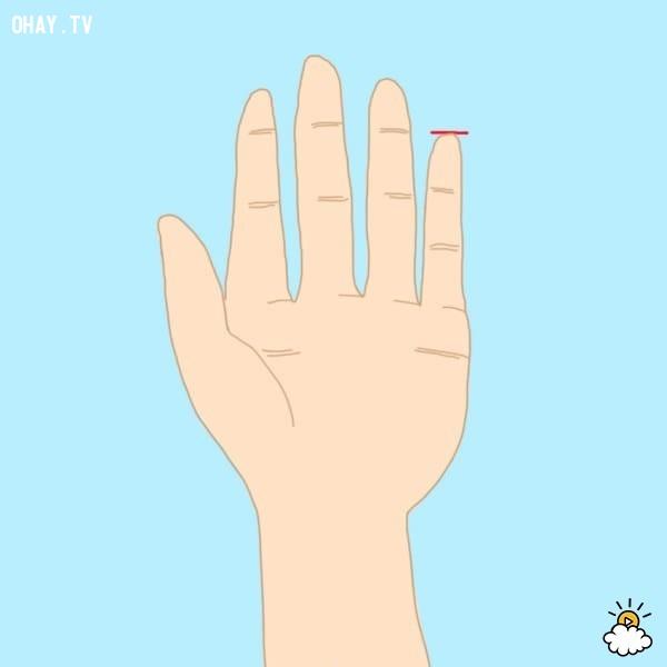 Kiểu 2: Ngón út cao bằng với đốt đầu tiên của ngón tay đeo nhẫn,trắc nghiệm,đoán tính cách