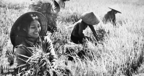 Việt Nam và những chướng ngại bắt buộc phải vượt qua