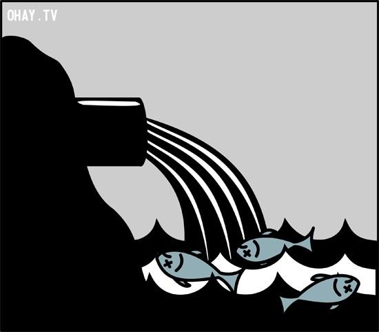 Những ống xả thải cũng đang hủy hoại dần môi trường biển,ô nhiễm môi trường,cá chết