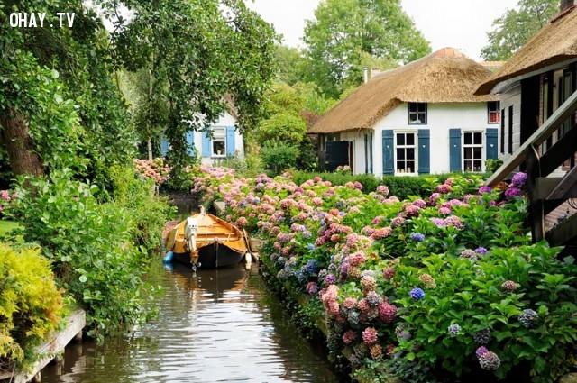 Làng Giethoorn không có bất cứ con đường nào.,làng cổ tích,ngôi làng kỳ diệu,Làng Giethoorn,những điều thú vị trong cuộc sống