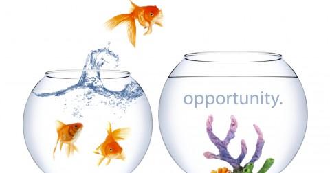3 chiến thuật giúp thu hút nhiều cơ hội mới