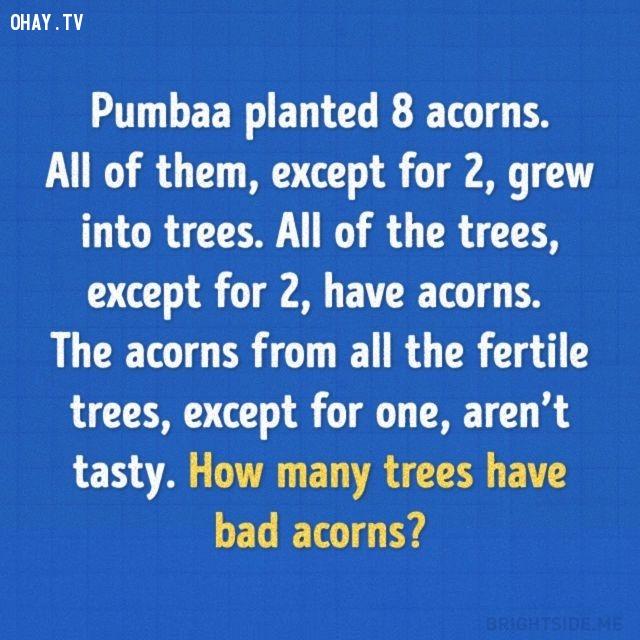 5. Pumbba trồng 8 hạt dẻ. Ngoại trừ 2 hạt thì số còn lại đều phát triển thành cây. Ngoại trừ 2 cây thì số cây còn lại đều có hạt. Tất cả các hạt dẻ trên cây, ngoại trừ 1 cây thì số cây còn lại đều không ngon. Hỏi có bao nhiêu cây có hạt dở?,trắc nghiệm,câu đố,giải đố,ai thông minh hơn học sinh tiểu học,trắc nghiệm vui
