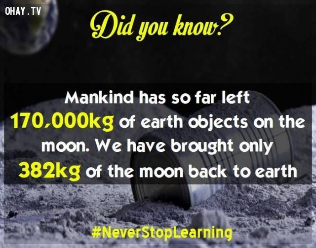 7. Cho đến nay loài người đã để lại 170.000 kg vật thể thuộc trái đất trên mặt trăng. Chúng ta chỉ mang 382 kg vật thể của mặt trăng về trái đất.,sự thật thú vị,những điều thú vị trong cuộc sống,sự thật đáng kinh ngạc,khám phá,có thể bạn chưa biết