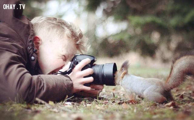 Có thấy tôi không?,bức tranh thú vị,nhà nhiếp ảnh,những con vật