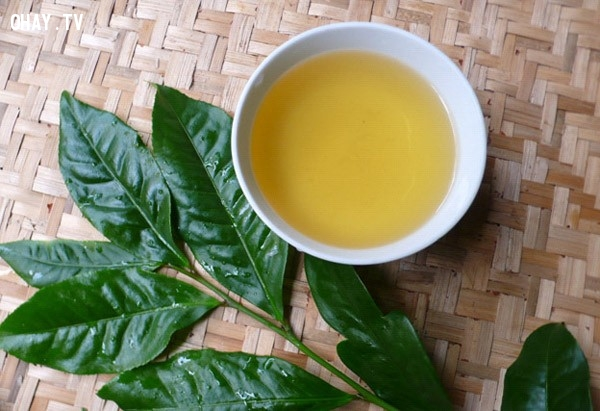 1.Trà xanh,giảm cân,giảm cân an toàn,thảo mộc giảm cân,sức khỏe và sắc đẹp,bài thuốc giảm cân,uống trà giảm cân