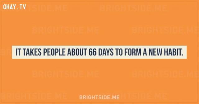 1. Mất khoảng 66 ngày để con người hình thành một thói quen mới.,sự thật thú vị,những điều thú vị trong cuộc sống,tâm lý học,khám phá,khám phá bản thân