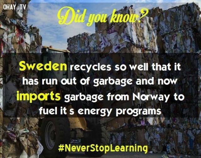 5. Thụy Điển tái chế tốt đến nỗi thiếu rác thải và hiện nay quốc gia này phải nhập khẩu rác thải từ Na Uy để lấy nhiên liệu phục vụ cho các chương trình năng lượng.,sự thật thú vị,những điều thú vị trong cuộc sống,khám phá,sự thật đáng kinh ngạc,có thể bạn chưa biết