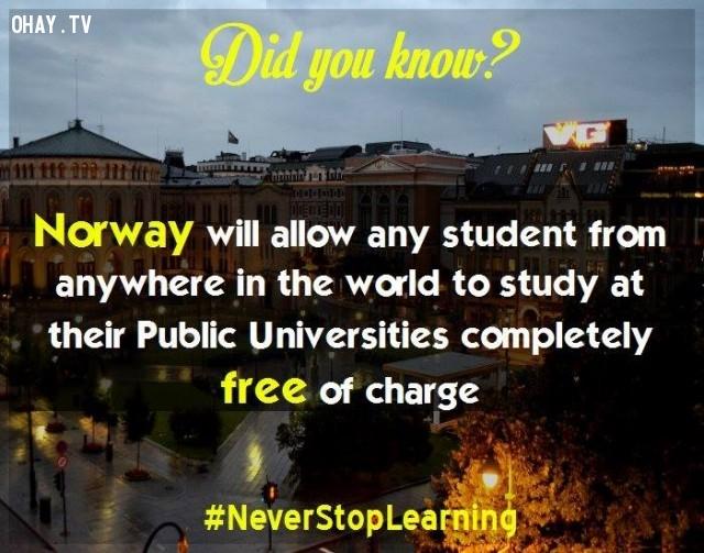 2. Na Uy có chính sách miễn hoàn toàn học phí cho tất cả các du học sinh từ bất cứ nơi nào trên thế giới theo học tại những trường đại học công lập của họ.,sự thật thú vị,những điều thú vị trong cuộc sống,khám phá,sự thật đáng kinh ngạc,có thể bạn chưa biết
