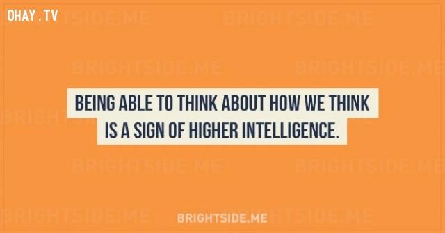 7. Có năng lực suy nghĩ về cách chúng ta nghĩ ngợi là một dấu hiệu của trí thông minh cao hơn.,sự thật thú vị,những điều thú vị trong cuộc sống,tâm lý học,khám phá,khám phá bản thân