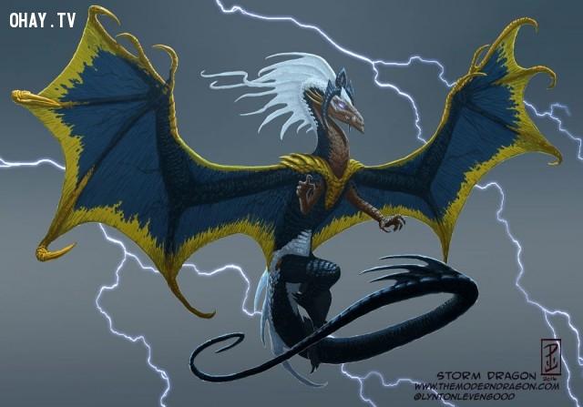 08. Rồng Storm,nhân vật truyện tranh,rồng,tranh vẽ,nghệ thuật