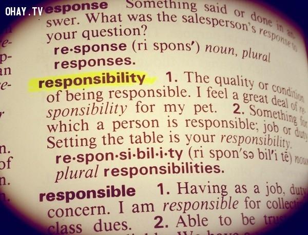 """5. Hãy từ bỏ việc """"vô trách nhiệm"""",từ bỏ,buông bỏ,sống hạnh phúc,làm thế nào để sống hạnh phúc"""
