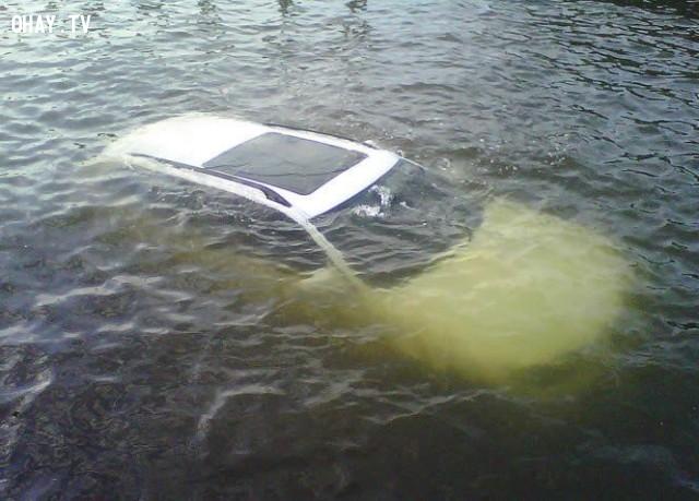5. Ngoi lên mặt nước,kỹ năng sinh tồn